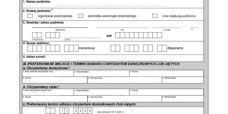 """""""Chryzantemy COVID-19"""" – Pomoc posiadaczowi chryzantem wpełnej fazie dojrzałości"""