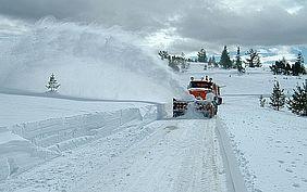 Zimowe utrzymanie dróg w gminie Pleśna